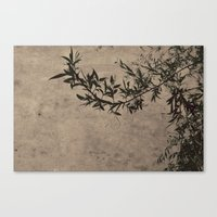 Oriental Breeze Canvas Print