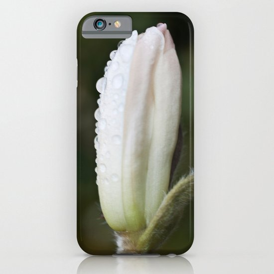 Magnolia in the rain iPhone & iPod Case