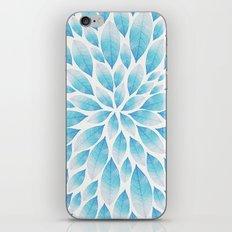 Petal Burst #9 iPhone & iPod Skin