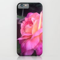 iPhone & iPod Case featuring Roses in Rhode Island by Sara Miller