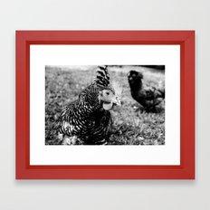 Hello Chicken Framed Art Print
