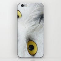 Snowy Owl Eyes iPhone & iPod Skin