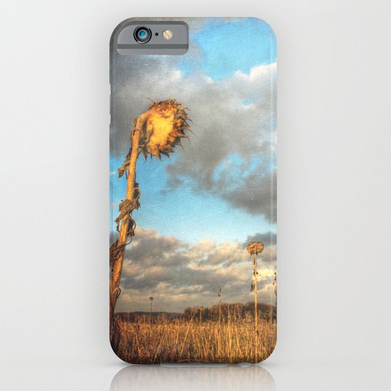 Field of lost Souls - Withered Sunflowers iPhone & iPod Case