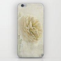 Botanical Notes  iPhone & iPod Skin
