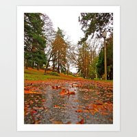 Art Print featuring Northwest bike path by Vorona Photography