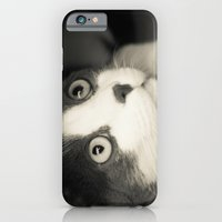 What Do You Think Mr Cat… iPhone 6 Slim Case