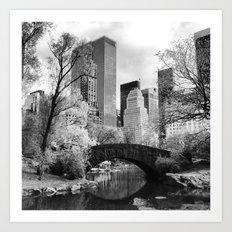 Central Park Bridge. Art Print