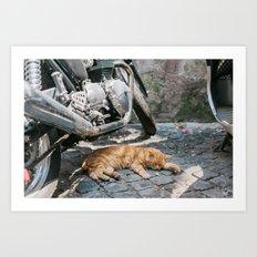 Orange Cat with Motorcycles Art Print