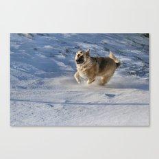 Joy In Motion Canvas Print