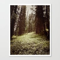 Mountain Forest Clearing Canvas Print