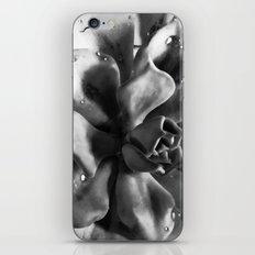 The Eye of Jupiter iPhone & iPod Skin