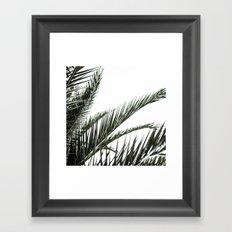Palm Leaves 2 Framed Art Print