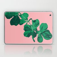 Branch Floripa Laptop & iPad Skin