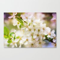 Spring Crowd Canvas Print