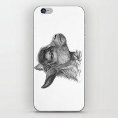 Goat baby G099 iPhone & iPod Skin