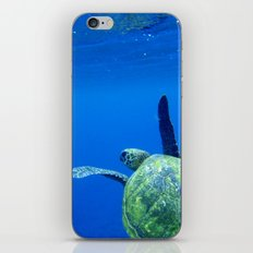 Turtle of the Sea iPhone & iPod Skin