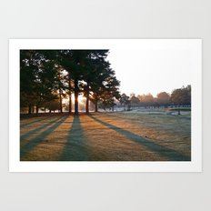 Willow Lake Golf Course Morning Art Print