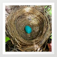 One Little Robin's Egg Art Print