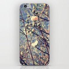 Flower series 01 iPhone & iPod Skin
