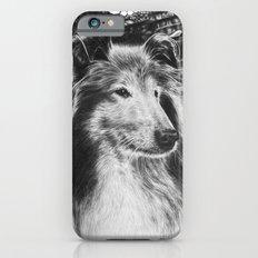 Rough Collie Dog iPhone 6s Slim Case