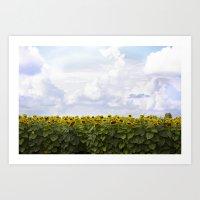 Sunshine and Sunflowers Art Print