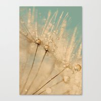 Dandelion Gold And Mint Canvas Print