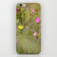 dandy iPhone & iPod Skin