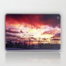 Arctic Warmpth Laptop & iPad Skin