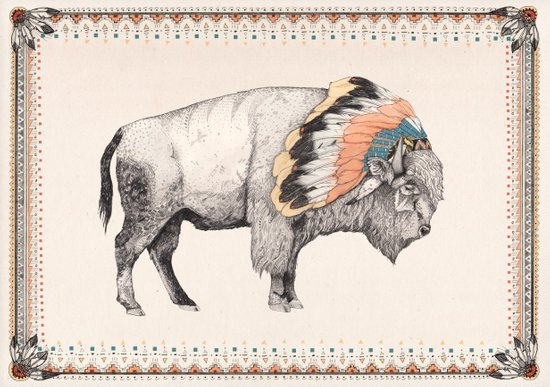 White Bison Canvas Print