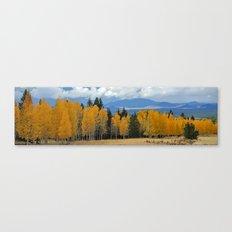 Arizona Autumn at Lockett Meadow Canvas Print