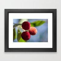 Strawberry Tree Fruits 8… Framed Art Print