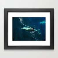SanJose Waters. Framed Art Print