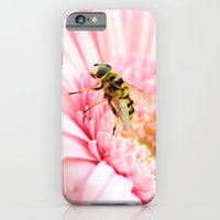 Sweet Late Summer iPhone 6 Slim Case