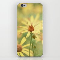 It Must Be iPhone & iPod Skin