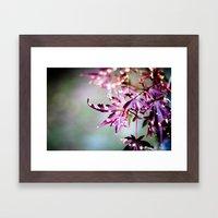 Seasons Come, Seasons Go Framed Art Print