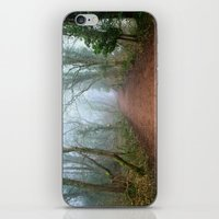 Foggy Woodland iPhone & iPod Skin