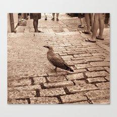Lonely Bird Canvas Print
