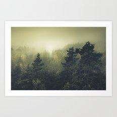Forests never sleep Art Print