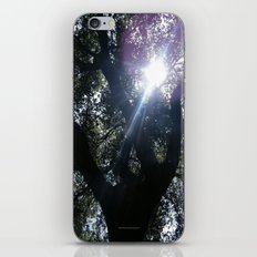 Treason TreeSun iPhone & iPod Skin