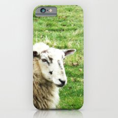 We Like Sheep iPhone 6 Slim Case