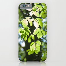 Light in the leaves Slim Case iPhone 6s