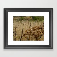 Navaro Bluffs, fall flowers III Framed Art Print