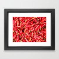 UN ROJO AJÍ EN PALOQUEMAO - RED HAXÍ IN PALOQUEMAO Framed Art Print