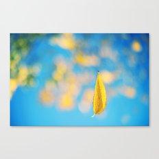 Yellow & blue Canvas Print