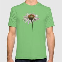 Coneflower & Bee Postale Mens Fitted Tee Grass SMALL