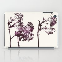 Sugar Maple 1 iPad Case