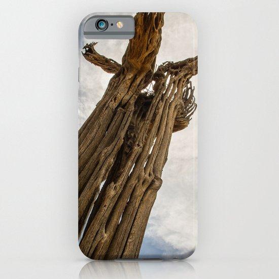 Saguaro Skeleton iPhone & iPod Case