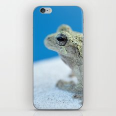 Ribbit iPhone & iPod Skin