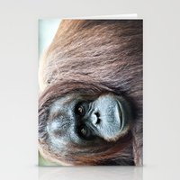 Orangutan Staring Stationery Cards
