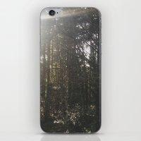 Of Light & Trees iPhone & iPod Skin